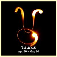 Taurus (5)